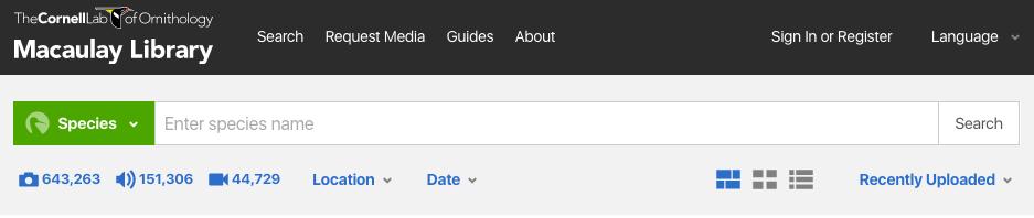 ml-search-header
