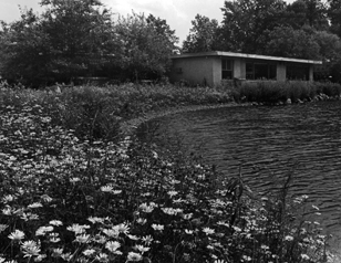The Cornell Lab of Ornithology view from the pond in the late 1950s