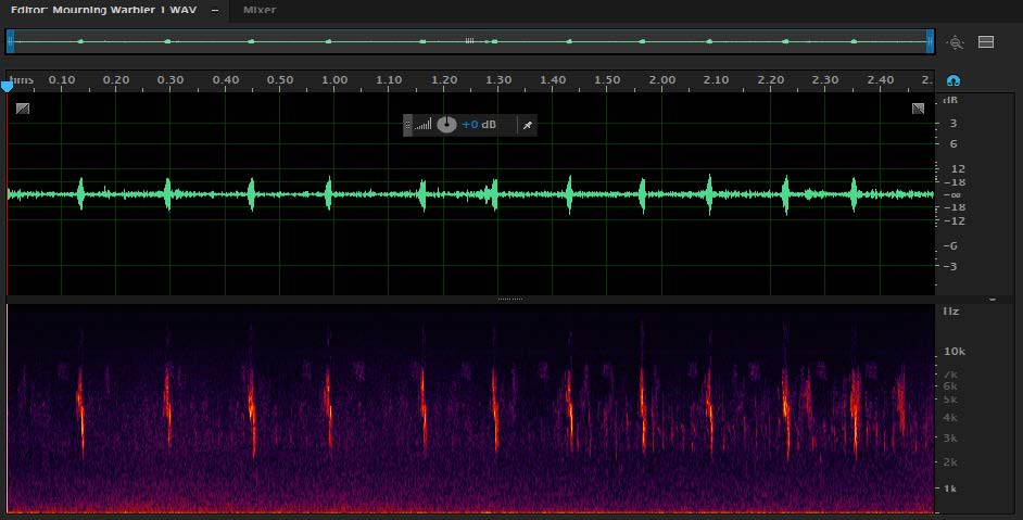 Prepare Sound Files in Audition – Macaulay Library